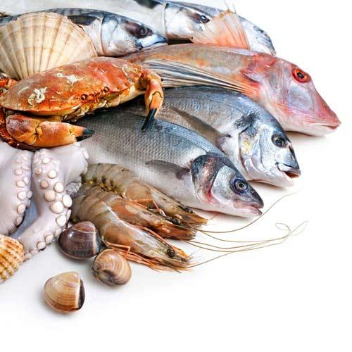 Испания: Андалусия удвоила производство продукции аквакультуры